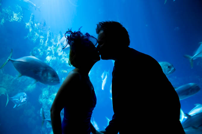 Wedding Photography at The Deep, Hull showing couple kissing underwater!